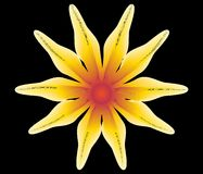 Abstract yellow flower. The abstract yellow flower on black background, vector illustration stock illustration