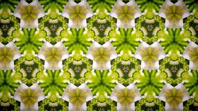 Abstract yellow green flower pattern background Stock Photos