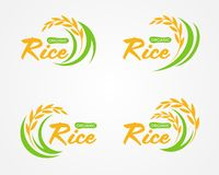 Abstract yellow green paddy Organic rice logo sign vector design vector illustration