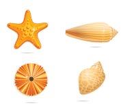 Abstract  yellow sea symbols set Royalty Free Stock Photos