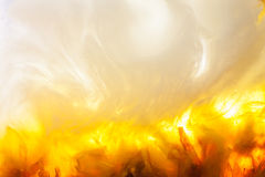 Abstract yellow and white background Stock Image