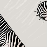 Abstract zebra vector background. Textile Grunge style Royalty Free Stock Images