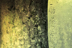 Abstract zen. Zen image of the sharp Japanese characters curved on weathered stone surface and blurred tree bark behind Stock Images