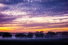 Abstract zonsopganglandschap op het landbouwbedrijf in Florida Stock Foto