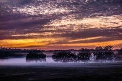 Abstract zonsopganglandschap op het landbouwbedrijf in Florida Royalty-vrije Stock Fotografie