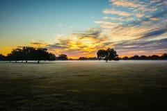 Abstract zonsopganglandschap op het landbouwbedrijf in Florida Stock Fotografie
