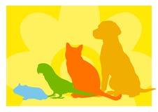 abstract zwierzę domowe sklep Obrazy Stock