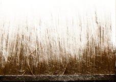 Abstracte achtergrond het varkenshaar van de borstel De herfst en de Winter stock fotografie