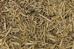 Abstracte achtergrond houten mulsspaanders Stock Fotografie