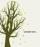 Abstracte achtergrond met boom Stock Foto's