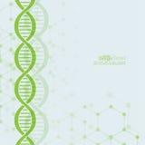 Abstracte achtergrond met DNA-moleculestructuur Royalty-vrije Stock Afbeeldingen