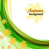 Abstracte achtergrond met heldergroene golven en esdoornbladeren op een witte achtergrond royalty-vrije illustratie