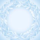 Abstracte achtergrond met het silhouet van pijnboomtakken Stock Fotografie