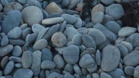 Abstracte achtergrond met stenen Kiezelstenen, kust Abstracte achtergrond met stenen stock videobeelden