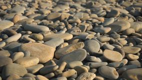 Abstracte achtergrond met stenen Kiezelstenen, kust Abstracte achtergrond met stenen stock video