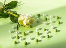 Abstracte Achtergrond van Bloemen Royalty-vrije Stock Afbeeldingen