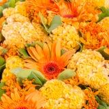 Abstracte Achtergrond van Bloemen Close-up Stock Afbeelding
