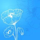 Abstracte achtergrond van bloemenpapavers Royalty-vrije Stock Fotografie