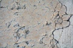 Abstracte achtergrond van de bestratings de marmeren muur met gaten stock fotografie