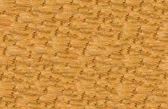 Abstracte achtergrond van geweven hout met verschillende lagen van kleur Royalty-vrije Stock Fotografie