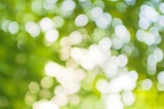 Abstracte achtergrond van groene groente stock afbeelding