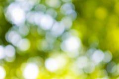 Abstracte achtergrond van groene groente royalty-vrije stock afbeeldingen