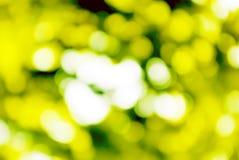 Abstracte achtergrond van groene groente royalty-vrije stock afbeelding