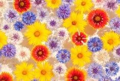 Abstracte achtergrond van kleurrijk Stock Foto