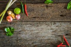Abstracte achtergrond van kruiden met ingrediënten en Aziatisch voedsel Royalty-vrije Stock Afbeelding