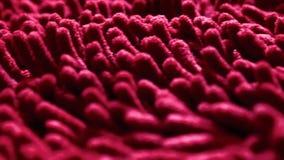 Abstracte achtergrond van rode stamens stock videobeelden