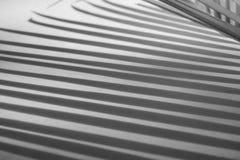 Abstracte achtergrond van schaduwpalmbladen op concrete ruwe textuurmuur Royalty-vrije Stock Afbeelding