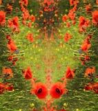 Abstracte achtergrond voor groeten in de vorm van hart met popp Stock Afbeelding