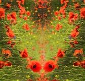 Abstracte achtergrond voor groeten in de vorm van hart met popp Royalty-vrije Stock Foto