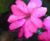 Abstracte, artsy roze bloem stock foto
