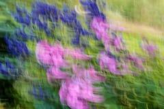 Abstracte blauwe en purpere bloemen Royalty-vrije Stock Foto