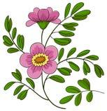 Abstracte bloem Stock Foto's