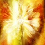 Abstracte bloem Royalty-vrije Stock Afbeelding