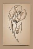 Abstracte bloem op een beige achtergrond. Imitatie inkt Royalty-vrije Stock Fotografie