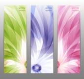 Abstracte Bloem Vectorachtergrond/Brochuremalplaatje/Banner. Royalty-vrije Stock Afbeelding
