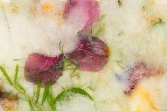 Abstracte bloemen en groene bladeren Royalty-vrije Stock Fotografie