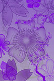 Abstracte bloemen en installaties Royalty-vrije Stock Foto's