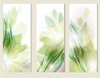 Abstracte bloemen geplaatste achtergronden Stock Fotografie