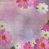 Abstracte bloemen geweven achtergrond Royalty-vrije Stock Foto's
