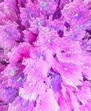 Abstracte bloemen nam en violette achtergrond toe Royalty-vrije Stock Foto