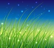 Abstracte Bloemen VectorAchtergrond met Gras Royalty-vrije Stock Afbeelding