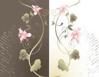 Abstracte bloemenachtergrond. Royalty-vrije Stock Foto