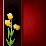 Abstracte bloemenachtergrond met de lentebloemen stock illustratie