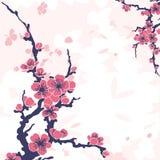Abstracte bloemenachtergrond met sakura Stock Foto's