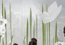 Abstracte bloemenachtergrond met vlinders Royalty-vrije Stock Foto