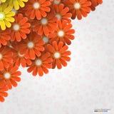 Abstracte bloemenachtergrond Vector illustratie Royalty-vrije Stock Afbeelding